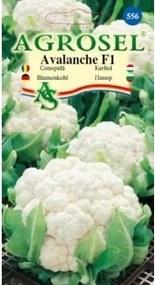Seminte conopida Avalanche F(100 sem) , Agrosel