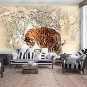 Fototapet - Tigri pe zăpadă (152,5x104 cm), în 8 de alte dimensiuni noi