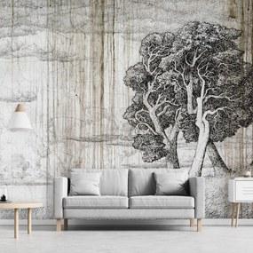 Fototapet - Copac - hârtie veche (152,5x104 cm), în 8 de alte dimensiuni noi