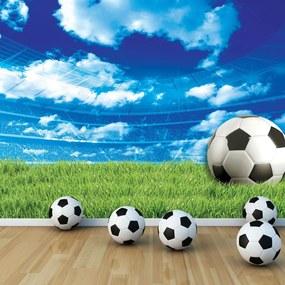 Fototapet - Fodbal pe iarbă (254x184 cm), în 8 de alte dimensiuni noi