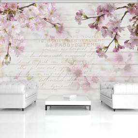 Fototapet - Flori de cireș (254x184 cm), în 8 de alte dimensiuni noi