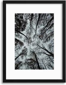 Imagine în cadru - Looking Up in Monochrome 30x40 cm