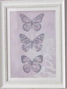 Imaginea încadrată  - Enchanted Butterflies