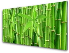 Tablou pe sticla Bamboo Peduncul Floral Verde