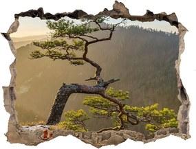 Fototapet un zid spart cu priveliște Pieniny sokolica