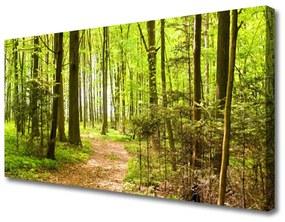 Tablou pe panza canvas Natural Pădurea Verde Maro