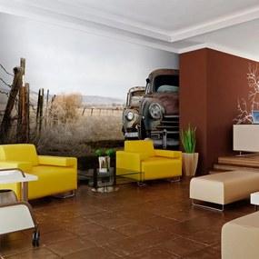 Bimago Fototapet - Two old, American cars 200x154 cm