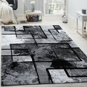 Covor Alaya, negru / gri, 120 x 170 cm