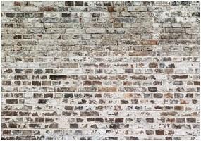 Tapet format mare Bimago Old Walls, 400 x 280 cm