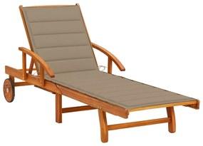 3061605 vidaXL Șezlong de grădină cu pernă, lemn masiv de acacia