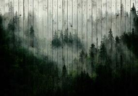 Fototapet - Ceața de pădure (152,5x104 cm), în 8 de alte dimensiuni noi