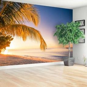 Fototapet palmier