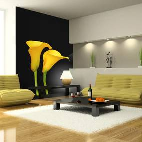 Fototapet Bimago - Two yellow calla flowers on a black background + Adeziv gratuit 400x309 cm