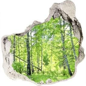 Fototapet 3D gaură în perete Pădurea de mesteacăn