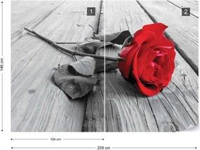 Fototapet GLIX - Red Rose  + adeziv GRATUIT Papírová tapeta  - 254x184 cm