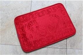 Covor baie Feet Feet, 60 x 40 cm, roșu