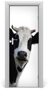 Autocolante pentru usi vacă de culoare pluricolori