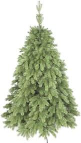 pin exclusiv natural - artificial crăciun tânăr neexperimentat 180 cm