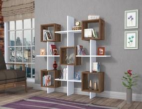 Biblioteca - Lara - Nuc