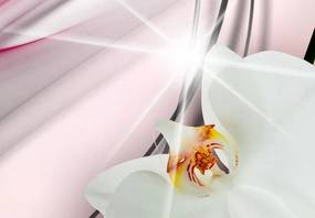 Tablou - Pink Melody 100x50 cm