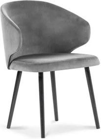 Scaun cu tapițerie de catifea Windsor & Co Sofas Nemesis, gri