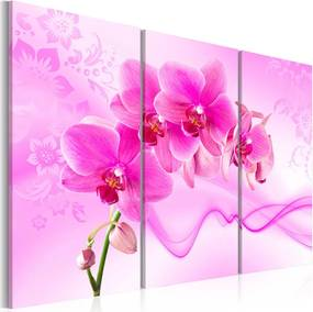 Tablou - Ethereal orchid - pink 60x40 cm