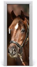 Autocolante pentru usi Portret de un cal
