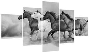 Tablou alb negru cu cai (125x70 cm), în 40 de alte dimensiuni noi