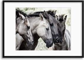 Imagine în cadru - Four Konik Horses by Jaap 70x50 cm
