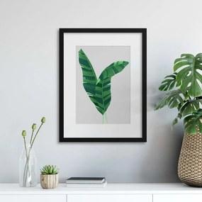 Imagine în cadru - Leaf Exotica II 30x40 cm