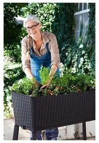 Jardiniera cu picioare EASY GROW Antracit
