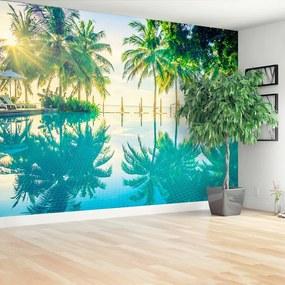 Fototapet Palms Pool