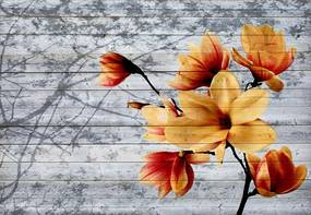 Fototapet GLIX - Magnolia Flowers Farmhouse 2 + adeziv GRATUIT Papírová tapeta  - 254x184 cm