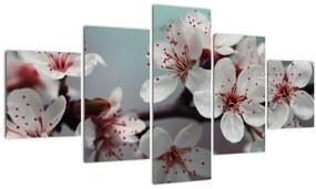 Tablou cu floare - roșie (125x70 cm), în 40 de alte dimensiuni noi