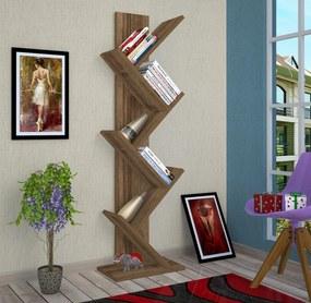Biblioteca - Tree - Nuc