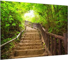 Tablou cu trepte ducând prin peisaj (K011329K7050)