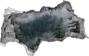 Samolepiaca nálepka betón Hmla les
