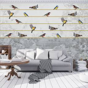 Fototapet - Păsări pe ață aurie (152,5x104 cm), în 8 de alte dimensiuni noi