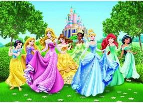 Fototapet printese din basme Disney 2 - pentru camere copii
