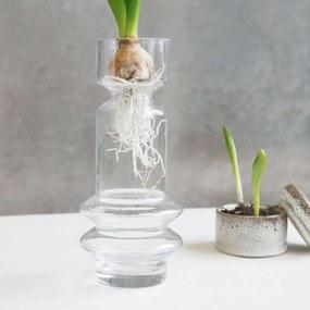 Vaza Transparenta SAPA - Sticla Transparent Diametru(7cm) x Inaltime(25cm)