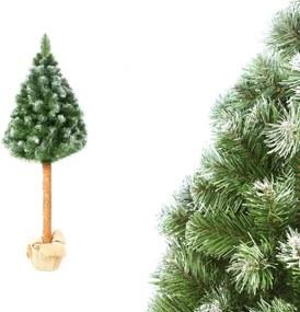Pom de Crăciun pe trunchi natural Pin 180 cm Luxury