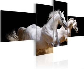 Tablou Bimago - Animal World- White Horses Galloping 200x90
