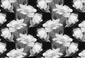 Fototapet - Ornament floral - alb negru (152,5x104 cm), în 8 de alte dimensiuni noi