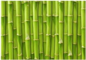 Covoraș din vinilin Bamboo, 52 x 75 cm