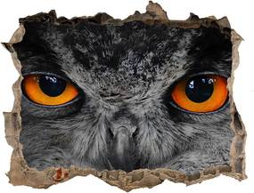 Autocolant gaură 3D Ochi diabolici bufniță