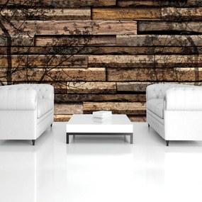Fototapet - Umbre de copaci pe scănduri din lemn (254x184 cm), în 8 de alte dimensiuni noi