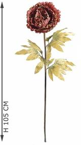Peonia gigant Burgundy
