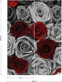 Fototapet GLIX - Red Roses  + adeziv GRATUIT Papírová tapeta  - 184x254 cm