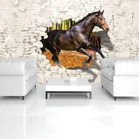 Fototapet - Calul a sărit din perete 3D (152,5x104 cm), în 8 de alte dimensiuni noi