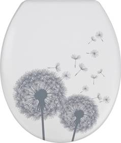Capac WC cu închidere lentă Wenko Astera, 45 x 37,5 cm